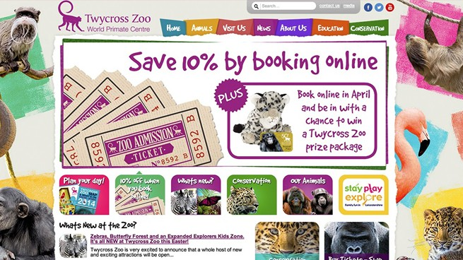 Case Study : Twycross Zoo website